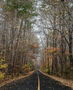Travel   Mississippi   Fall   Foliage   Road Trip   Mississippi Byway   State Park   Natchez Trace Parkway   Day Trip