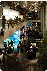wedding eve dinner at the SC Aquarium