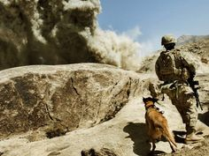 Today, we step up for the unsung heroes, our nations War Dogs (15 Photos) -      View as Slideshow              The mechanics of a 15 lb. IED exploding is more profound than you might even guess. The shock wave alone compresse... See more at https://www.icetrend.com/today-we-step-up-for-the-unsung-heroes-our-nations-war-dogs-15-photos/