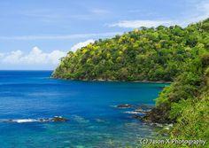 Kickstart your day with this enticing photo of Pirate's Bay, Tobago   Image Credit: Jason X Photography  #Tobago #Trinidad #TrinidadAndTobago #Caribbean #POTD #PhotoOfTheDay #TobagoBookings #PiratesBay #PiratesBayTobago #PictureOfTheDay