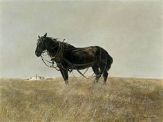 View South Cushing by Andrew Wyeth on artnet. Browse upcoming and past auction lots by Andrew Wyeth. Andrew Wyeth Paintings, Andrew Wyeth Art, Jamie Wyeth, Nc Wyeth, Winslow Homer, Art For Art Sake, Tempera, Equine Art, Horse Art