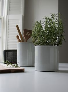 Our Toro Pots made from glazed soft grey ceramic are an ideal accessory for your kitchen. Use as a herb plant pot or utensils pot, or both! A clean crisp Scandinavian design that has timeless contemporary appeal. Faux Flower Arrangements, White Lamp Base, Faux Flowers, White Lamp, Velvet Cushions, Grey Ceramics, The Hamptons, Scandinavian Design, Flower Shop