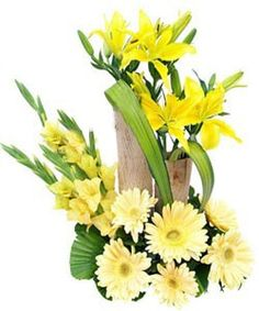 Basket Arrangement of 6 Glad, 6 Gerbera and 4 Asiatic Lilly.