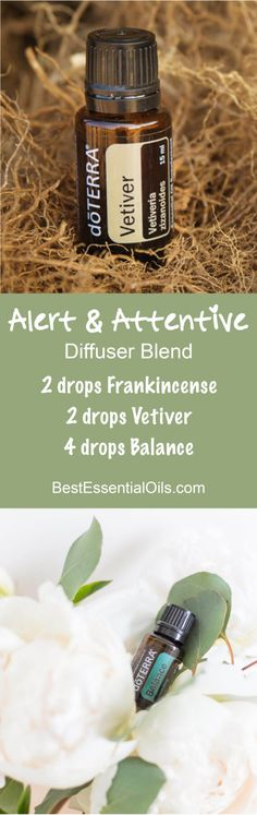 Here you can learn about doTERRA oils for focus. If you need a little help focusing, I have a list of diffuser blends that will help you focus. Vetiver Essential Oil, Essential Oil Diffuser Blends, Essential Oil Uses, Natural Essential Oils, Doterra Diffuser, Doterra Essential Oils, Doterra Blends, Healing Oils, Diffuser Recipes