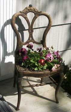 Use an old chair to plant flowers