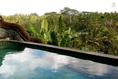 Vacation Rentals, Homes, Experiences & Places - Airbnb Ubud Indonesia, Air Bnb, Full House, Bed And Breakfast, Perfect Place, Condo, Fantasy, Adventure, Vacation