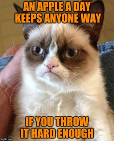 Grumpy Cat | AN APPLE A DAY KEEPS ANYONE WAY IF YOU THROW IT HARD ENOUGH | image tagged in memes,grumpy cat | made w/ Imgflip meme maker