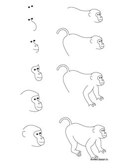 You can try adding a body to the monkey by drawing a circle connected to the head and another smaller circle inside for the belly. Description from downloadtemplates.us. I searched for this on bing.com/images