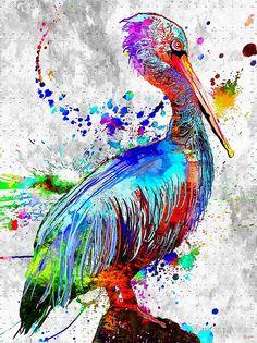 Pelican Grunge