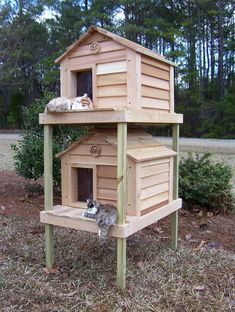 Insulated Cat House, Heated Outdoor Cat House, Outdoor Cat Shelter, Outdoor Cat Enclosure, Outdoor Cats, Outdoor Cat House Diy, Outdoor Sheds, Heated Cat House, Feral Cat Shelter