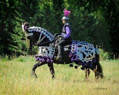 This is not my photo but I love it just the same!!  Friesian.