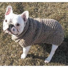 my frenchies would love this sweater. i'd like a matching one for myself as well. love the knit.