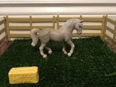 This is the 2005 Lippizaner Stallion.