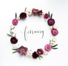 ☘ Ⱳᴇʟϲoмᴇ ༻ February
