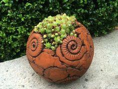 Gartenkugel mit Hauswurz: