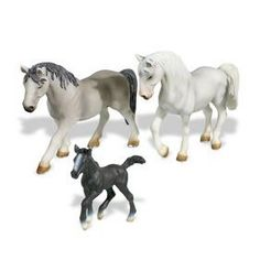 Lippizaner family, have colt and mare ( darker grey one )