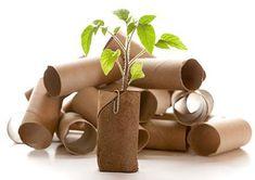 cardboard toilet paper rolls to start seedlings. 10 Frugal Gardening Tips. Organic Gardening, Gardening Tips, Vintage Gardening, Garden Projects, Projects To Try, Jardin Decor, My Secret Garden, Lawn And Garden, Garden Inspiration