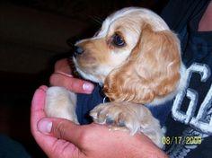 baby Lloyd!