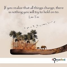 """If you realize that all things change there is nothing you will try to hold on to."" Focusfied.com #quote"