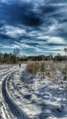 Winterlandscape in Sweden  Photo : Emma Ask  #winter #Sweden #landscape