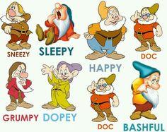 Seven Dwarfs.