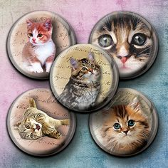 "Kittens & Cats 48 bottle cap images Digital Collage Sheet circles 1 inch, 1.25"",1.5"", 30mm downloads printable cabochon, pendants,charm,tags"