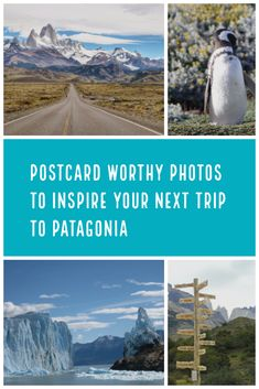 Postcard Worthy Photos to Inspire Your Next Trip to Patagonia.