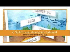 An online community for art stampers and scrapbookers Fancy Fold Cards, Folded Cards, Split Coast Stampers, Good Grammar, Beach Cards, Still Picture, Interactive Cards, Friends Set, Card Making Tutorials