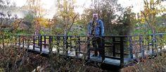 El Caminante y Su Sombra.Bluesman: Puentes…