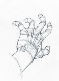 ArtStation – Hand, Stefano Lanza – – Keep up with the times. Anatomy Sketches, Anatomy Art, Anatomy Drawing, Manga Drawing, Drawing Sketches, Art Drawings, Drawings Of Hands, Hand Anatomy, Hand Drawing Reference