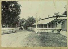 Straatgezicht met koets op Ambon  c. 1900 - c. 1920