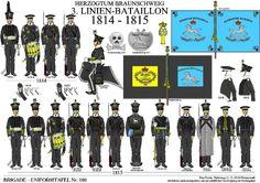 Brunswick 3rd Line Infantry 1814-15