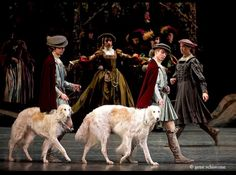 Borzoi ballet.  My Kalina had a sire who was picked up every evening by taxi to perform in Uncle Vanya at the theatre.