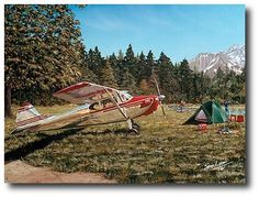 AVIATION ART HANGAR - Back Country by Sam Lyons (Cessna 170)