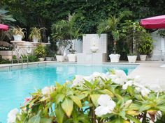 Our Stay at the Chic and Iconic Chesterfield Palm Beach