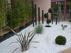 Des graviers blancs délimitent l'espace zen du jardin. Dessiné face au mur de bambou il est ponctué de plusieurs troncs en bois noir, de boules de buis et de plantes grasses d'extérieur.