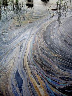oil polluted water - Google Search