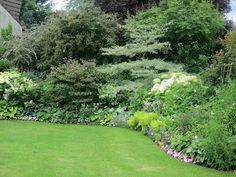 Art de pelouse sur pinterest for Jardin anglais mixed border