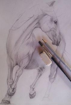 Marina Castellan: work in progress