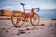 Specialized Giant Bicycle Fans Cannondale Bicycle   Merida Bikes to release  pro-lvl disc c5a0f3565