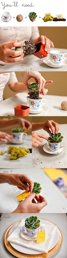 make table settings using a succulent plant and small vintage tea cup DIY plante grasse + tasse + mousse / tea cup flower pot Repinned by www.silver-and-grey.com