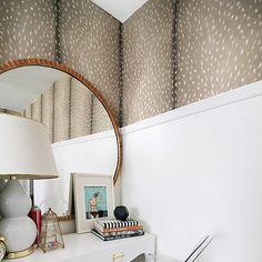 Fawn Wallpaper