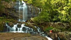 Photo/Video Gallery | Gorongosa National Park