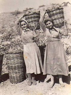 Retro Images, Vintage Pictures, Old Pictures, Old Photos, Malta History, Greek History, Greece Photography, History Of Photography, Films Western