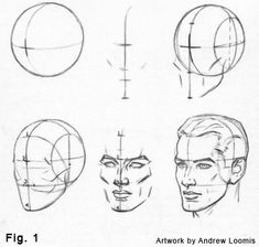 Free Download how to draw a head step by step andrew loomis | homehow.net via PinCG.com