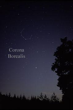 Corona Borelis