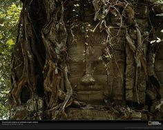 Ancient Temple hawaiian ruins | National Geographic: Photo of the Day: 10/11/08