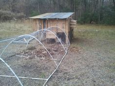 our new chicken coop made of recycled pallets