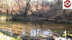 Video Río Da Pedra, Río Cereixo - Tomiño - Baixo Miño