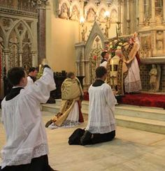 """Why the Latin Mass?  """"This language does not belong to any specific nation and cannot be exploited by nationalism. This language lifts our hearts beyond borders, races, times and social or political classes and lets us pray together and experience the universal character of the Catholic Church """""""